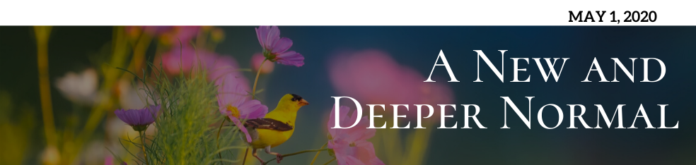 A New and Deeper Normal – The Soul's Place in Ensuring Our Continued Evolution