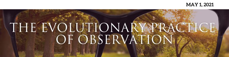 The Evolutionary Practice of Observation